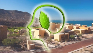 Living green in Baja